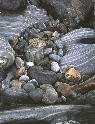 L6  - Beach Rock & Bedrock Schist-New Harbor, Maine