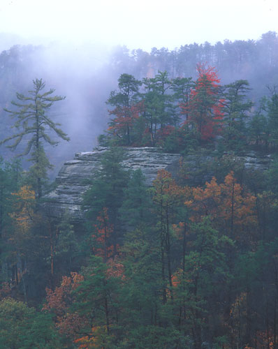 RRG2 - Fall1-Red River Gorge, Kentucky