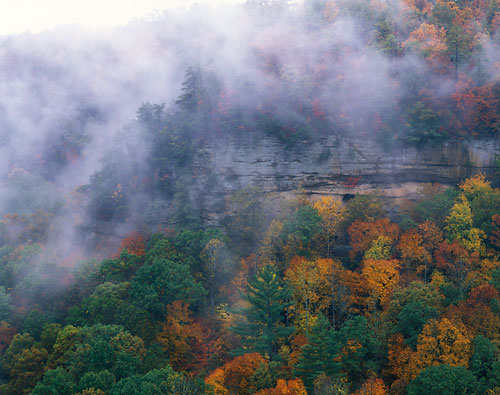 RRG6 - Fall3-Red River Gorge, Kentucky