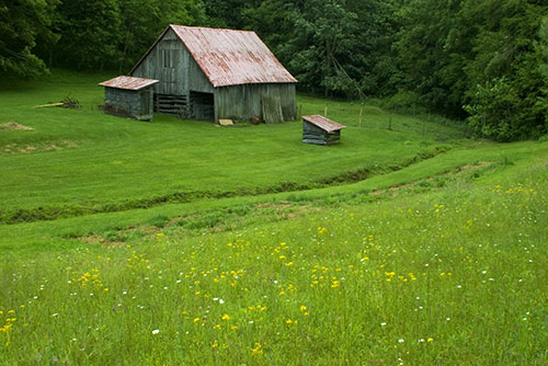 Dave Miller Homestead