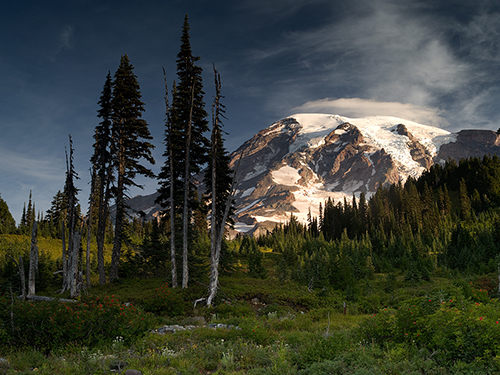 Sunrise_On_Mt_Rainier_Paradise_Mt_Rainier_NP_WA